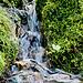 Rainey Creek Falls